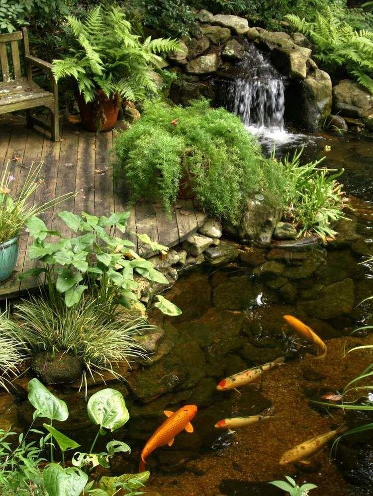 Pinspiration - 90 Stylish Backyard  Garden Waterfalls Pond, Water