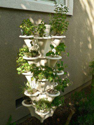 rubenatureza: Fazer jardim