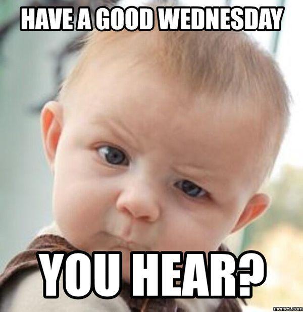 Happy Wednesday Memes To Post To Social Media Fishing Memes Fishing Humor Fish