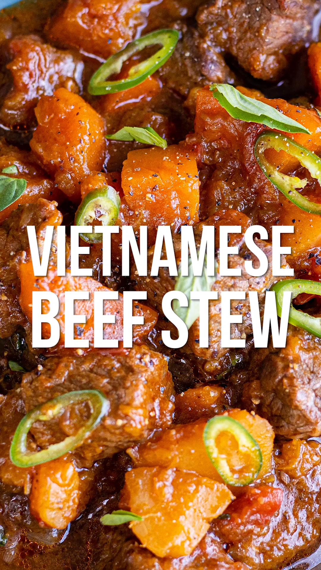 Photo of Vietnamese Beef Stew