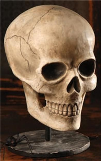 HAMLET SKULL- Hamlets old friend, Yorick he finds while ...