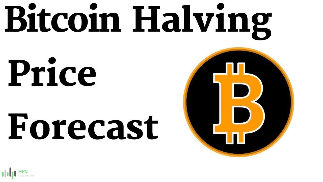 Bitcoin btc halving price forecast the latest