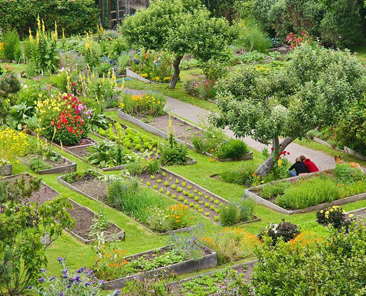 Kitchen Vegetable Garden | Jardin Potager | Bauerngarten | Organic Garden  Tour: An Eco