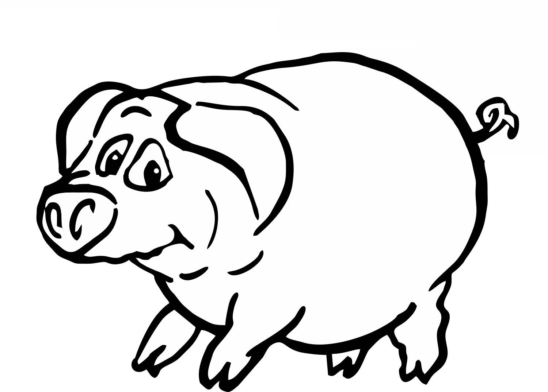 Schwein | Ausmalbilder Tiere | Pinterest | Ausmalbilder tiere ...