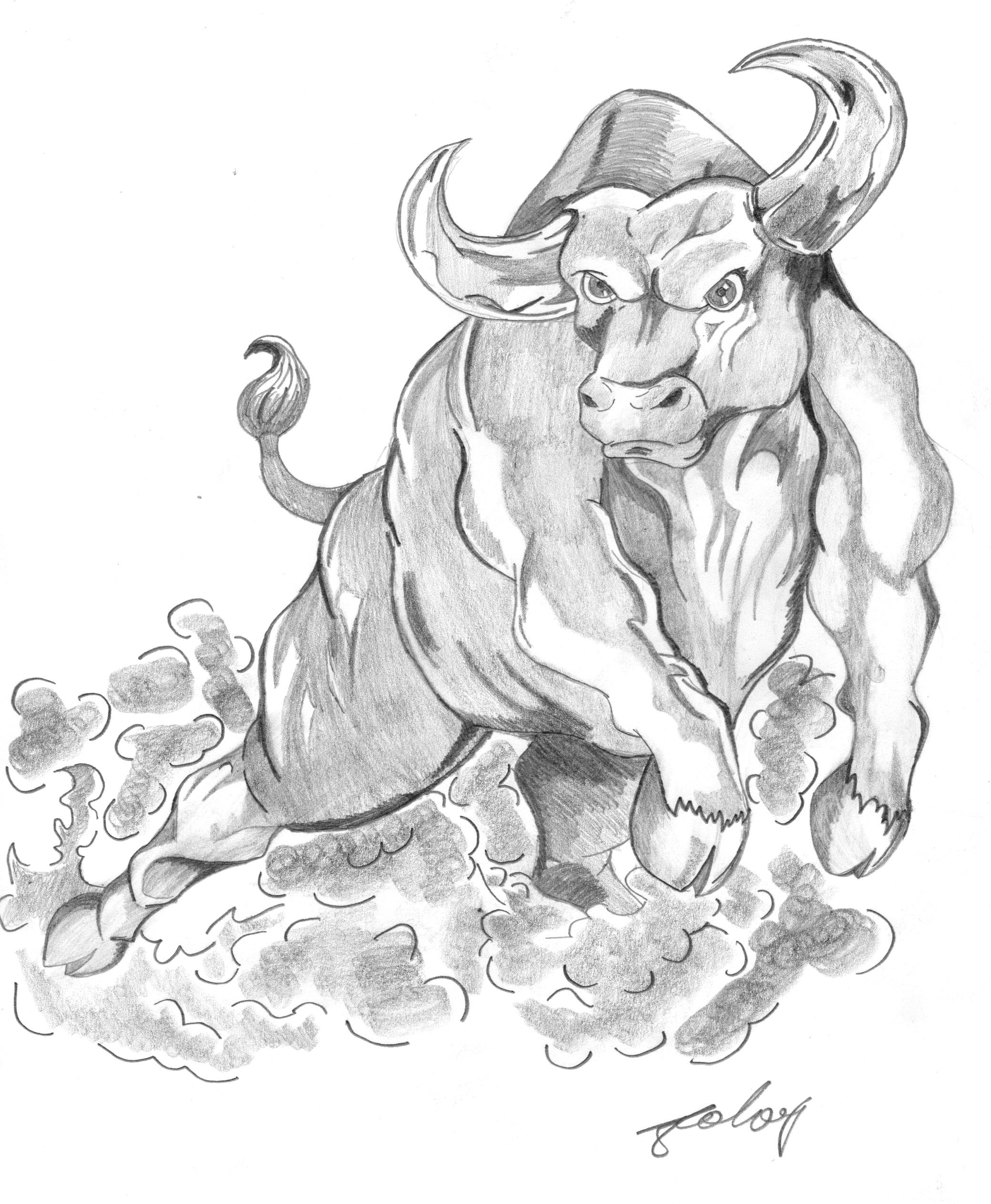 Картинка как нарисовать быка