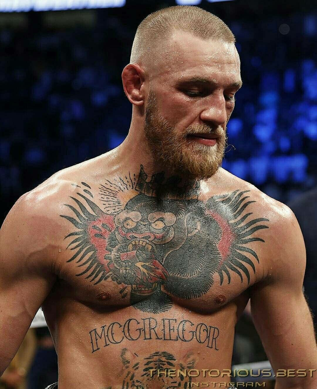 Pin By Dan Cotlar On Boks Conor Mcgregor Mcgregor Ufc 202