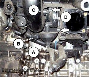 BMW M54 PCV Crankcase Ventilation Check Valve and Oil