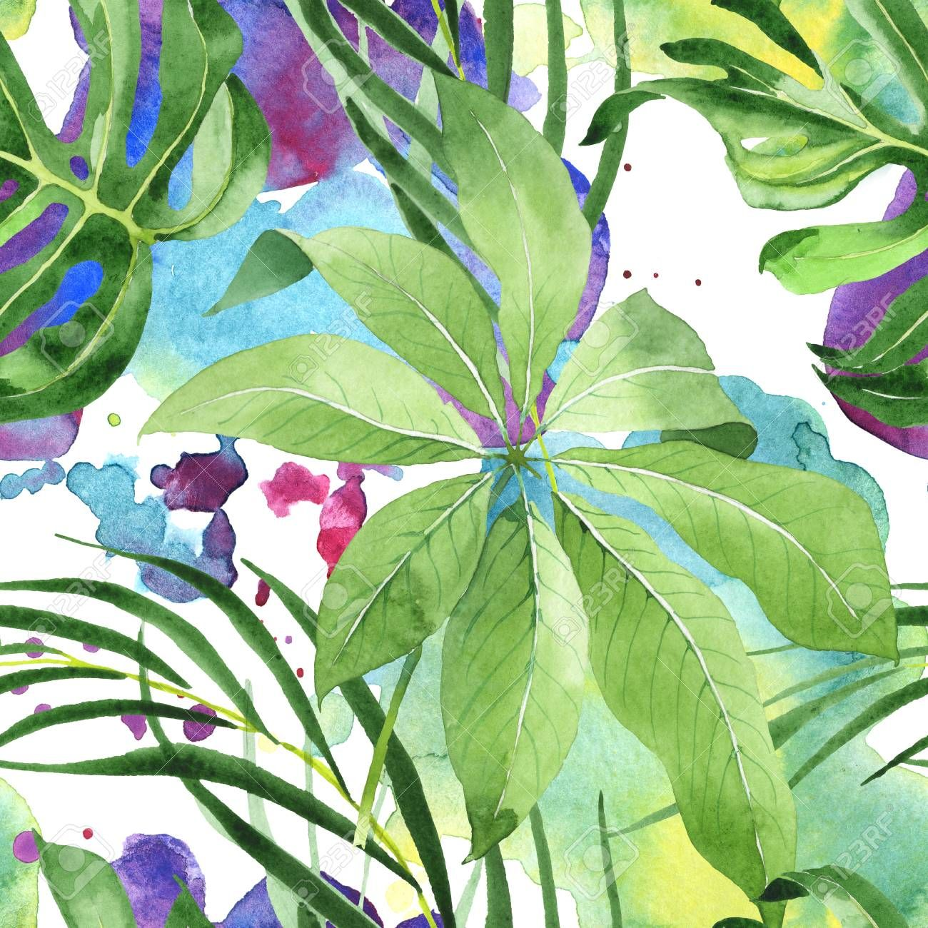 Palm Beach Tree Leaves Jungle Botanical Watercolor Illustration
