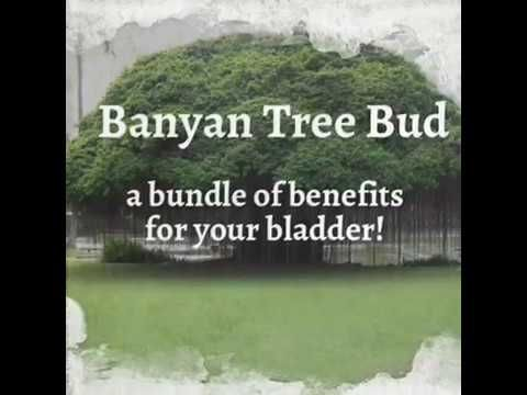 bundle of benefits