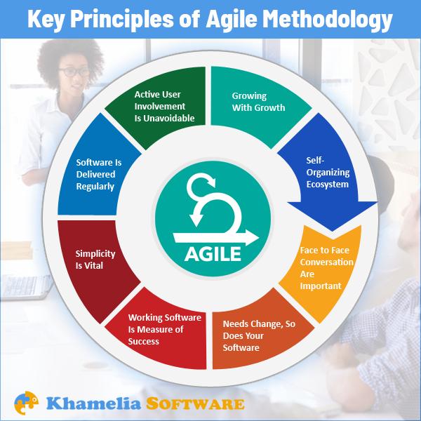 Ensure A Consistent Adoption Of Agile Values Principles Practices With Khamelia Software Pvt Ltd Agile Business Project D Agile Principles Development