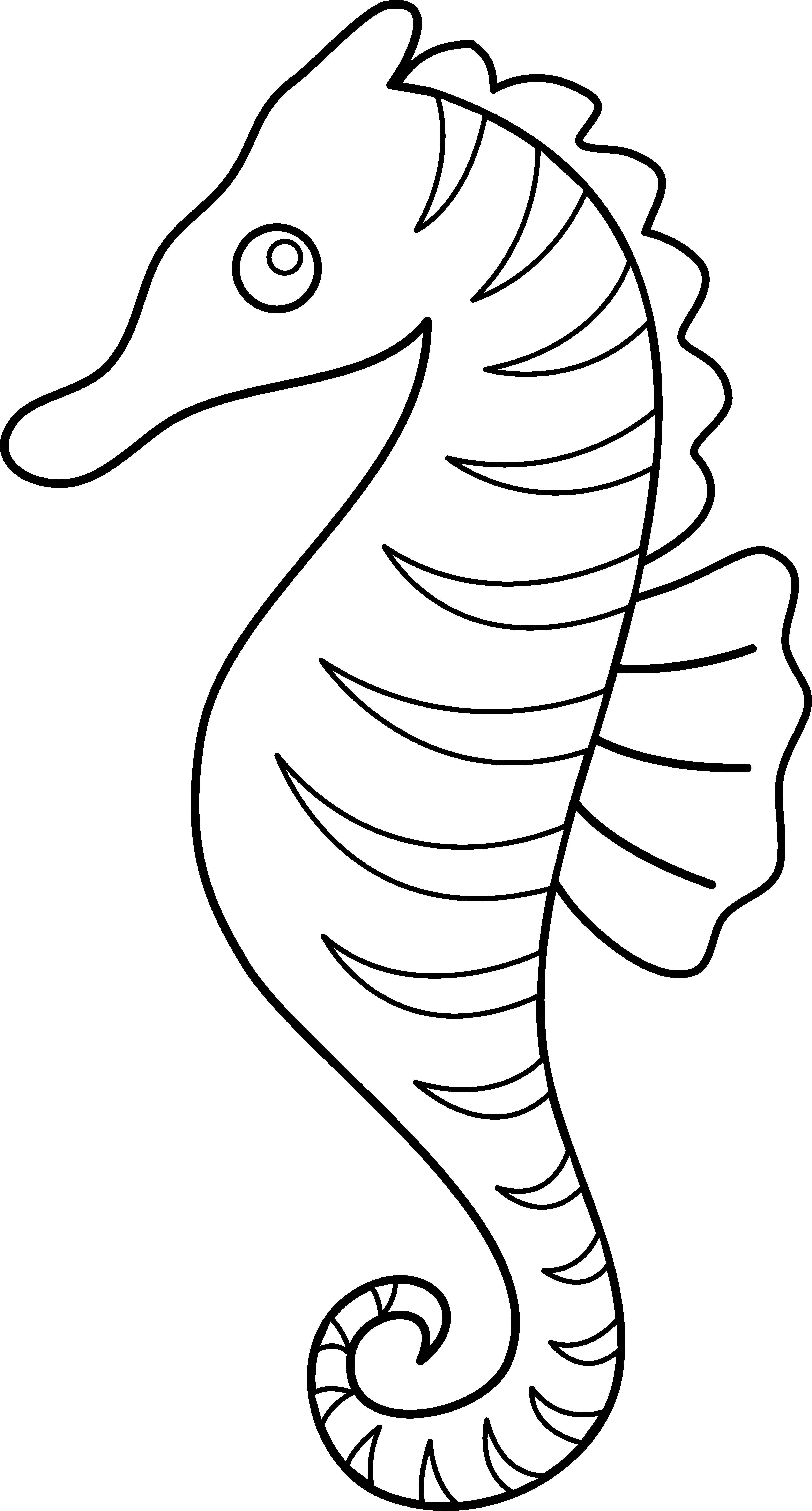 Seahorse Drawing Google Search Horse Coloring Pages Fish Coloring Page Free Clip Art
