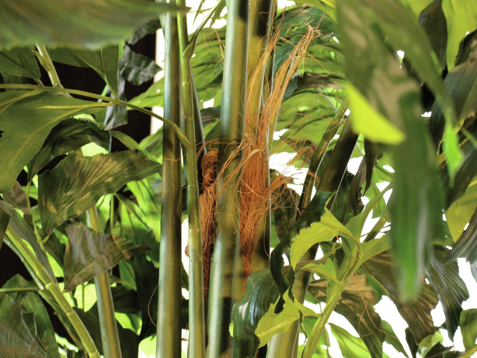 Sztuczne Kwiaty Dlaczego Wybieramy Sztuczne Rosliny Europalms Blog Megascena Pl Plant Leaves Plants Leaves