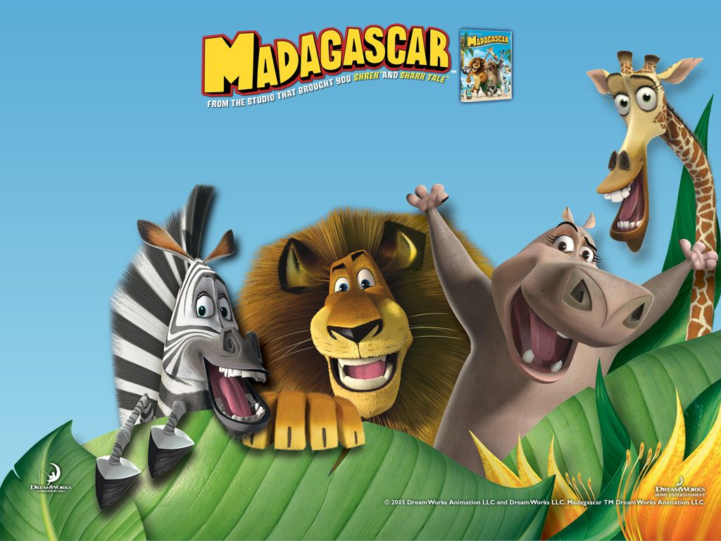 Pics of disney madagascar animals free madagascar hd - Madagascar wallpaper ...
