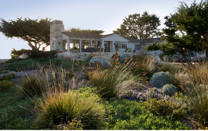 In a seaside garden in carmel california landscape for California native landscape design