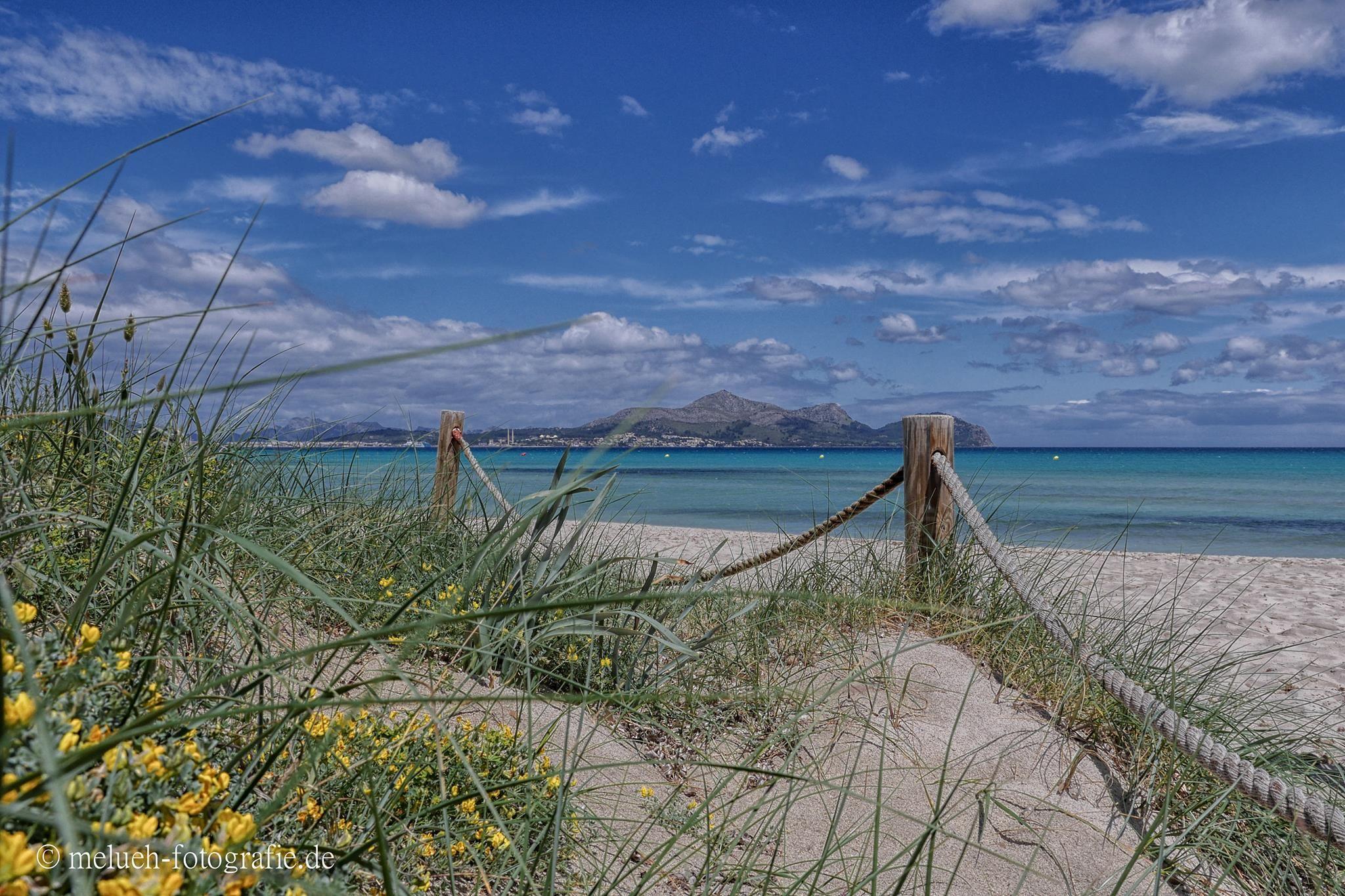 Muro Beach. Mallorca  https://www.facebook.com/Andrea.melueh/photos