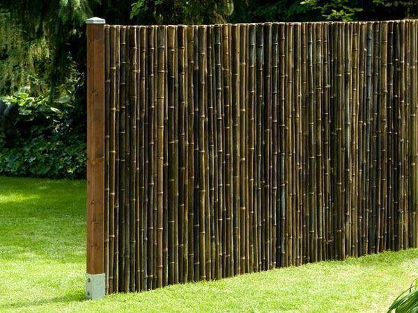 Schönes Gras und Bambus Sichtschutz #bambussichtschutz Schönes Gras und Bambus Sichtschutz #bambussichtschutz Schönes Gras und Bambus Sichtschutz #bambussichtschutz Schönes Gras und Bambus Sichtschutz #bambussichtschutz Schönes Gras und Bambus Sichtschutz #bambussichtschutz Schönes Gras und Bambus Sichtschutz #bambussichtschutz Schönes Gras und Bambus Sichtschutz #bambussichtschutz Schönes Gras und Bambus Sichtschutz #bambussichtschutz Schönes Gras und Bambus Sichtschutz #bambussichtsch #bambussichtschutz