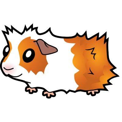 r sultats de recherche d images pour guinea pig clipart rh pinterest com