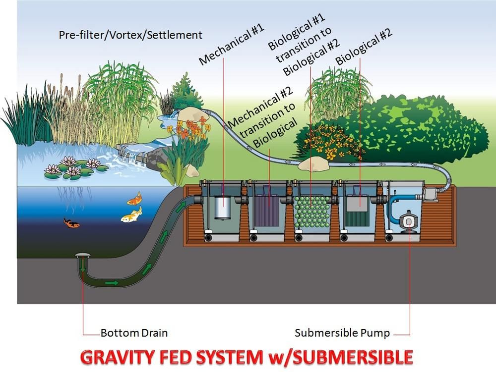 Gravity filter goose pond pinterest filter pond and for Fish pond water filtration system