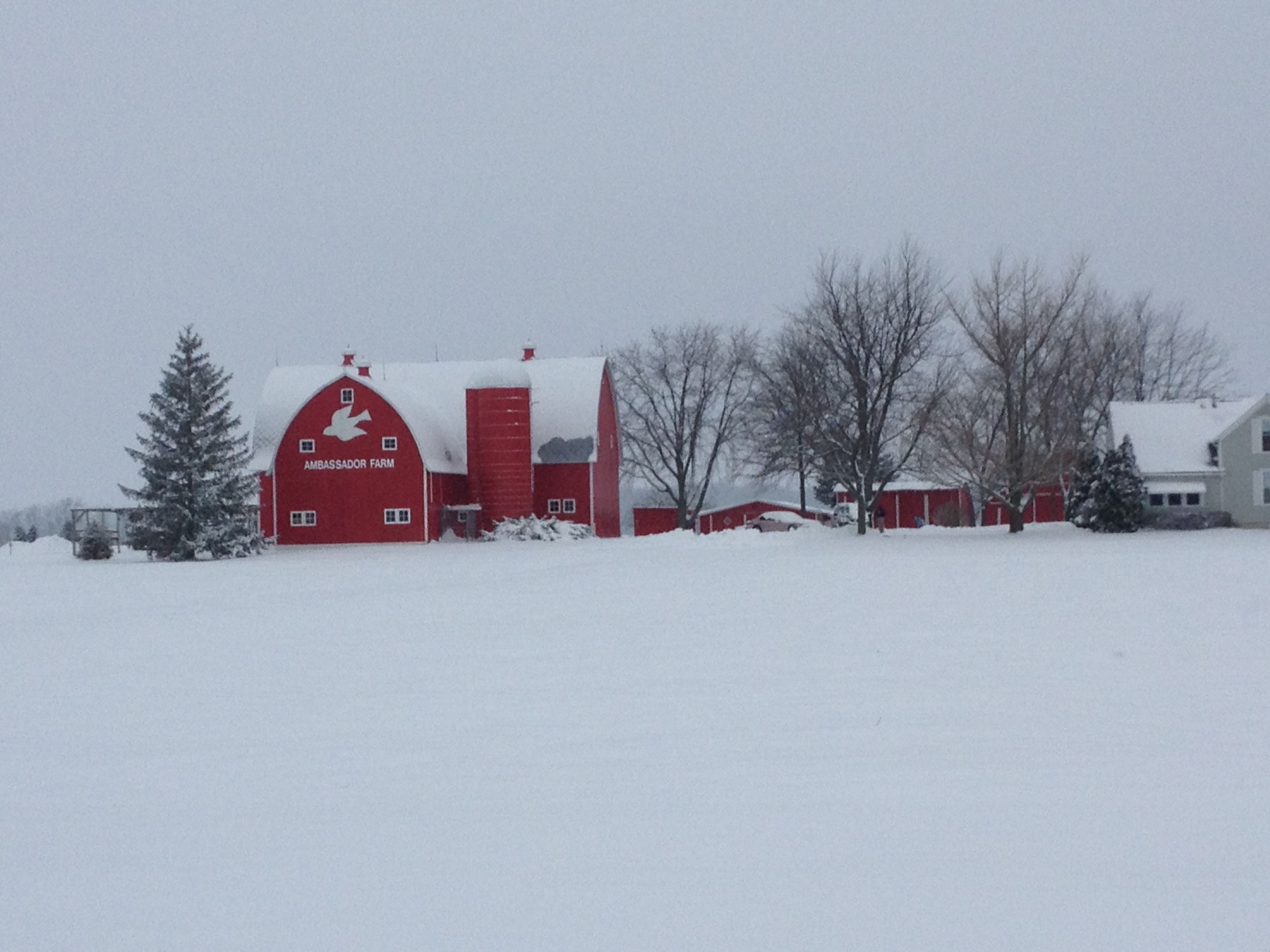 Beautiful winter day near New Bremen, OH Some of you will totally know this place!!!