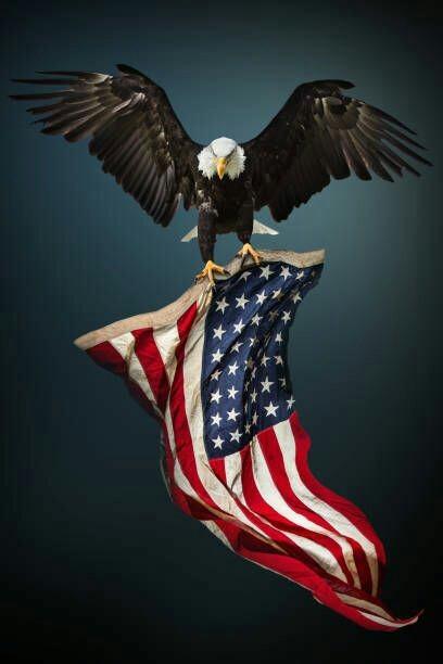 1 Tumblr American Flag Eagle American Flag Art American Flag Wallpaper