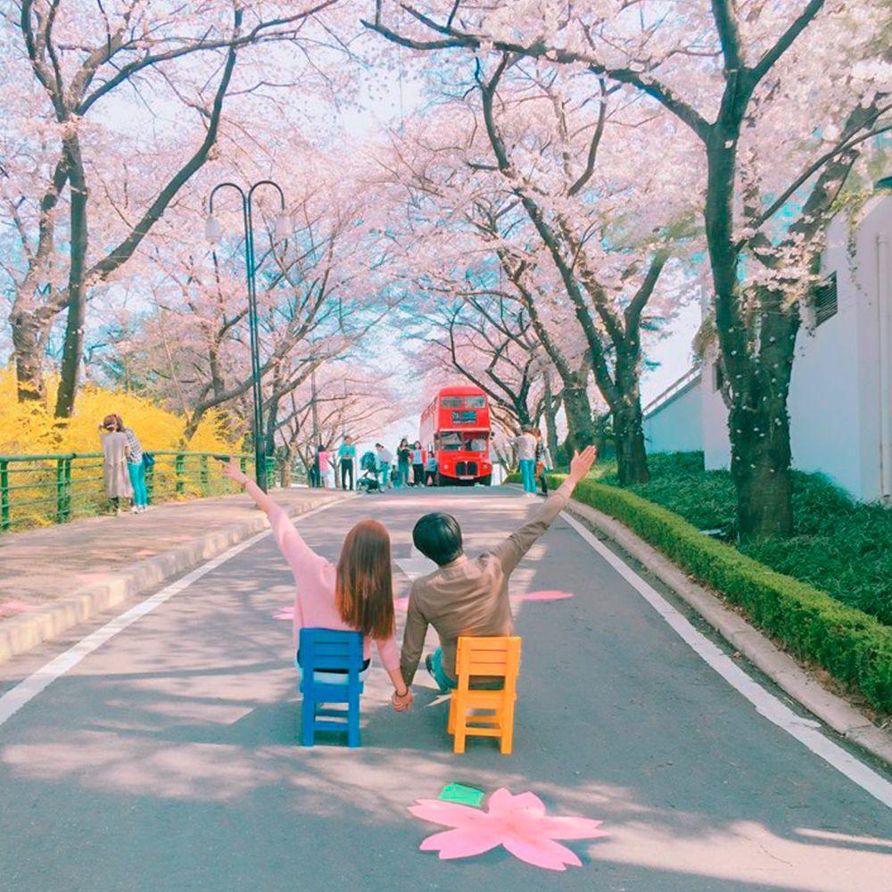 Kết quả hình ảnh cho 이월드 벚꽃축제