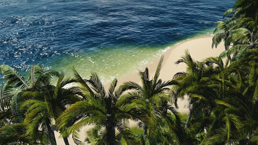 Forest With Ocean In The Background Stock Footage Video 141496 ...