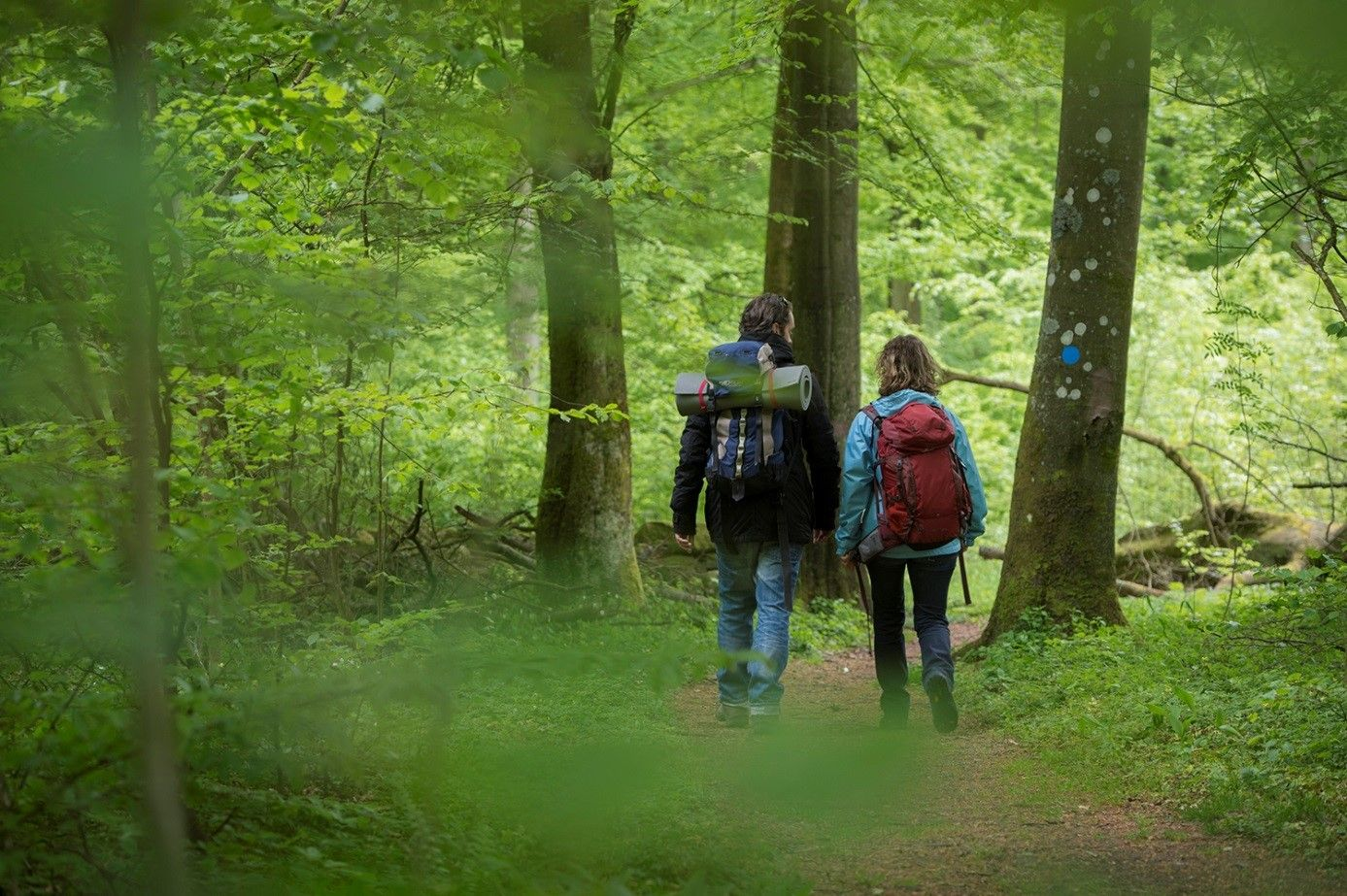 Skåneleden: Around Fulltofta. The circular footpath along Åkes rundled in Fulltofta Recreation Area, lies in the middle of Skåne. There are lots of things to experience at Fulltofta Nature and Visitor Centre, exciting springs and Stone Age monuments await you. Photo: Johan Hammar #hiking #southernsweden #skaneleden