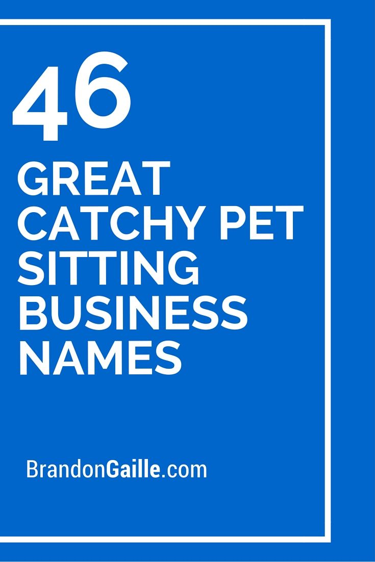 125 Great Catchy Pet Sitting Business Names | Pet Sitting | Pet