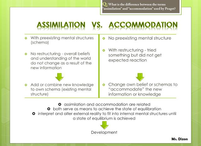 assimilation vs accommodation
