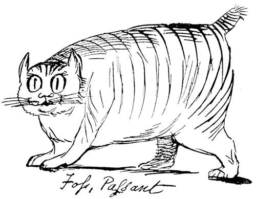 Edward Lear's Foss the cat