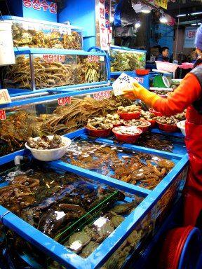 Garak Market For Dinner Fresh Seafood Dinner Eat