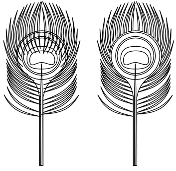 Peacock Feather Walkthrough Stage 8