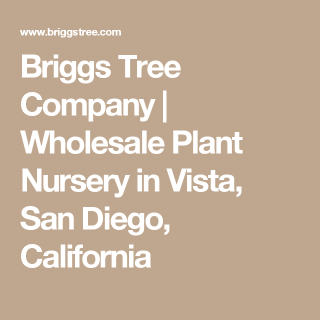 Briggs Tree Company Whole Plant Nursery In Vista San Go California
