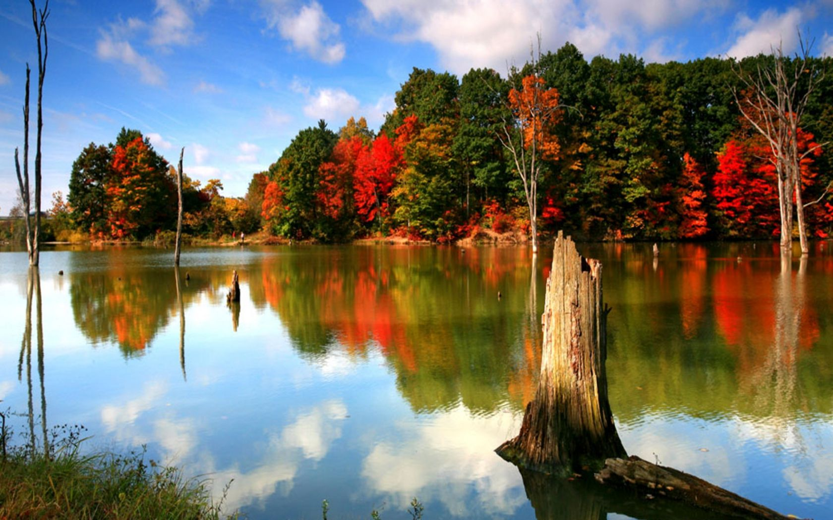 autumn | Autumn Wallpaper 006, Free Wallpapers, Free Desktop Wallpapers, HD ... | The colors of ...