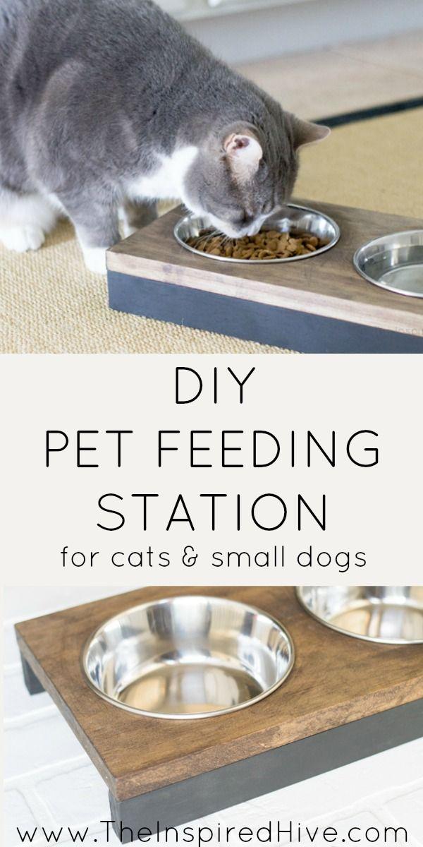 The Simplest Diy Wooden Pet Feeder Cat Food Station Pet Feeding Station Pet Feeder