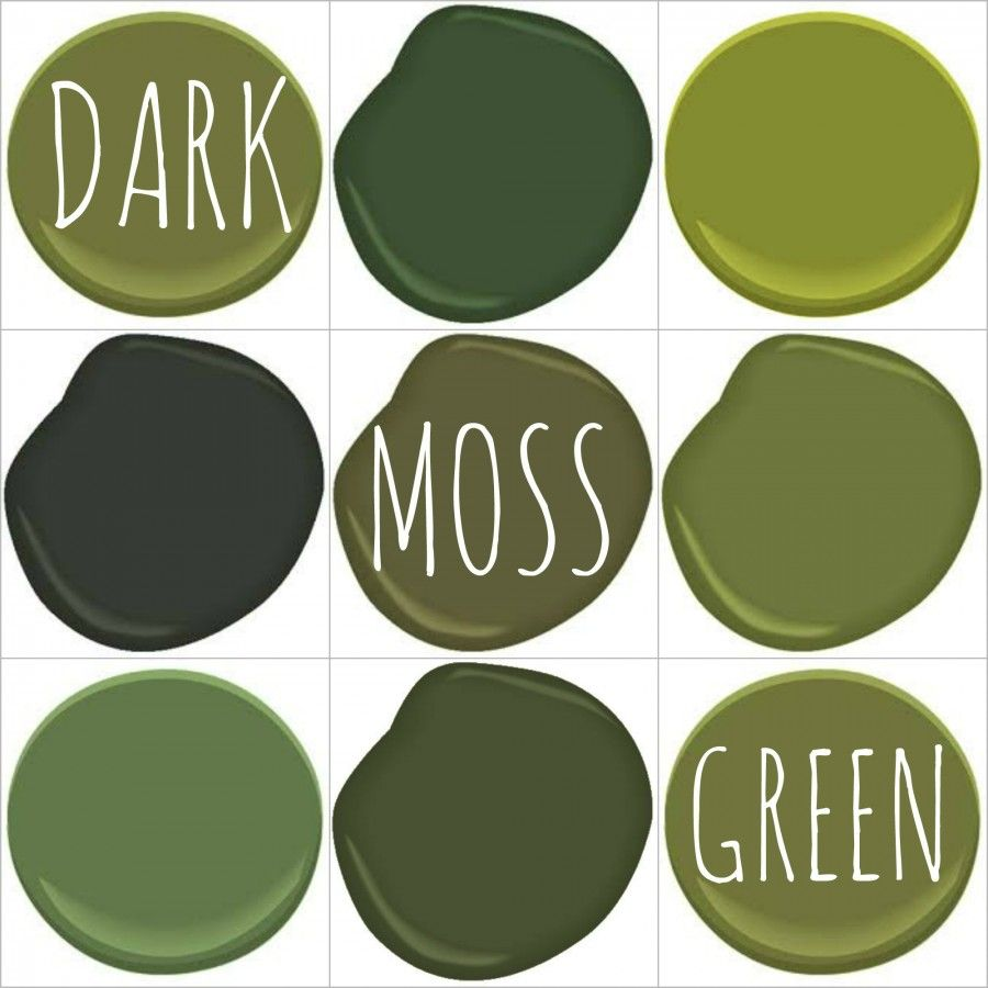 Colorful Rooms Moss: COLOR ON TREND – DEEP MOSSY OLIVE GREEN