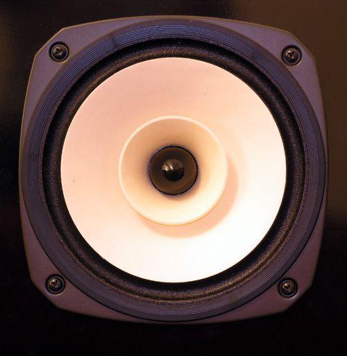 Fostex Full Range Speaker Drivers