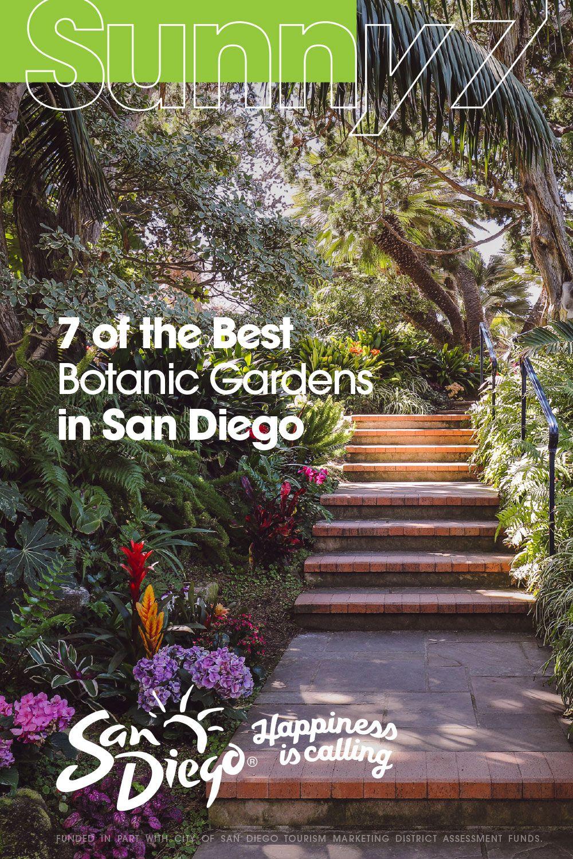 f236059efacb2b1f1a2291a275306612 - San Diego Botanical Gardens Free Tuesday