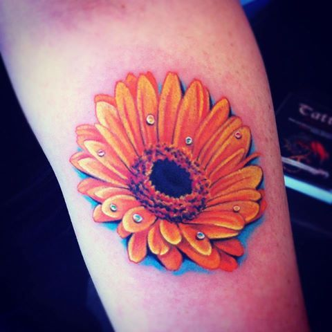 Pin By Kathy Mckinney On Look At All The Pretty Flowers Daisy Tattoo Gerbera Daisy Tattoo Daisy Tattoo Designs