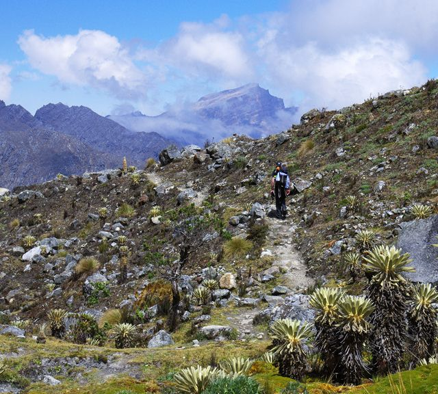 #Colombia Trek - Day 5 in the Sierra Nevada del Cocuy http://www.aliexpress.com/item/Free-shipping-new-2013-Hightop-formal-pointed-toe-leather-shoes-men-business-shoes-oxfords-wedding-shoes/1329545488.html