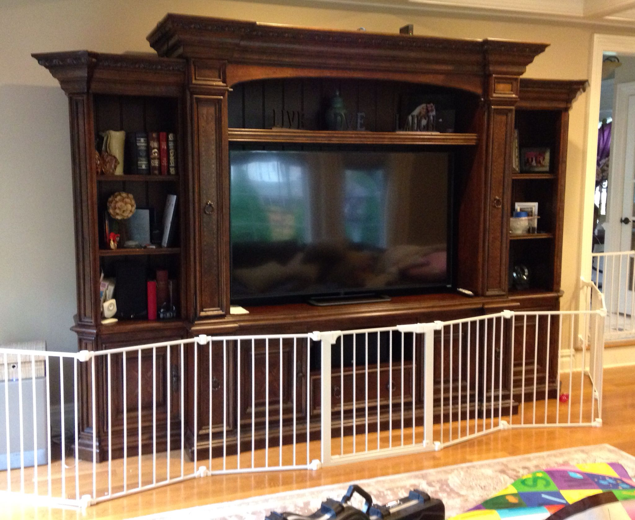 Safety Gate in front of the Entertainment Center. This prevents little one