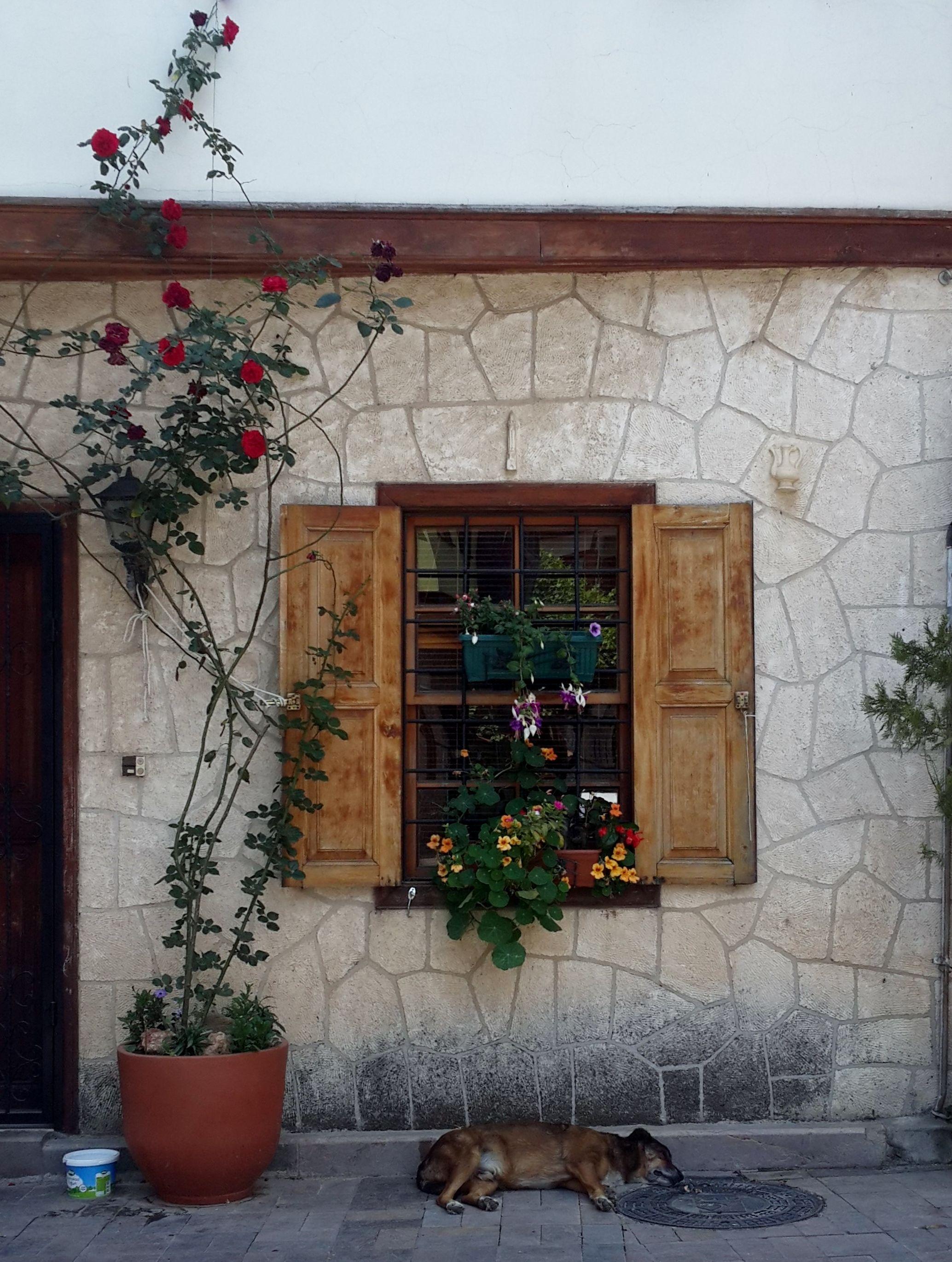 Antalya Kale Ici House Roses