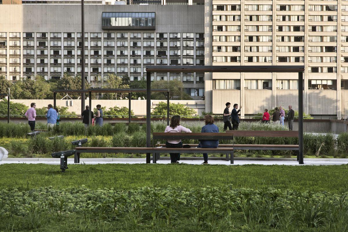 Pergola Concepto 2 Roof Garden Roof Garden Plants Green Roof Garden