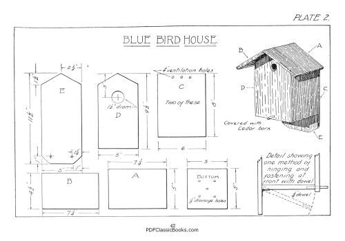 Boy Birdhouse Architecture How To Build Birdhouses With 18 Practical Plans Birds Poultry Animal Care Bird House Plans Free Bird House Plans Bird Houses