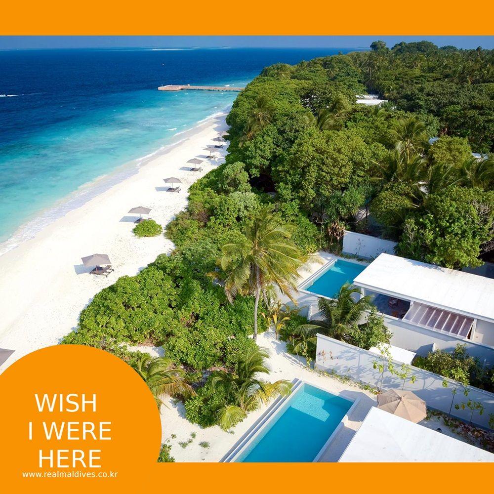 나만의 프라이빗한 공간, 개인풀, 그리고 그 앞으로 펼쳐지는 눈부신 해변과 푸르른 바다... 우리가 상상하는 휴양의 정석, 몰디브 #리얼몰디브 #몰디브 #Maldives #몰디브여행사 #몰디브리조트 #traveling