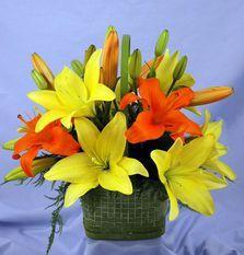 #decor #obimarcet #lily #rose #orchid #paprotnik #hrisantem #dostavkabuketa #com http://dostavkabuketa.com