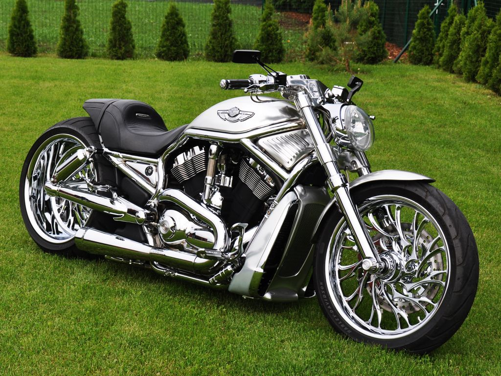 Admirable 03 Harley Davidson Vrsca V Rod Fredy Ee Harley Davidson Lamtechconsult Wood Chair Design Ideas Lamtechconsultcom