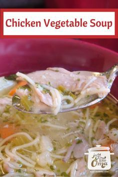 Chicken Vegetable Soup ... so wonderfully comforting on a cold winter evening ... or anytime! Check out http://www.quick-german-recipes.com/chicken-vegetable-soup-recipe.html