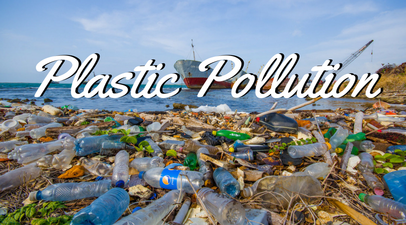 The causes, effects and solution for plastic pollution