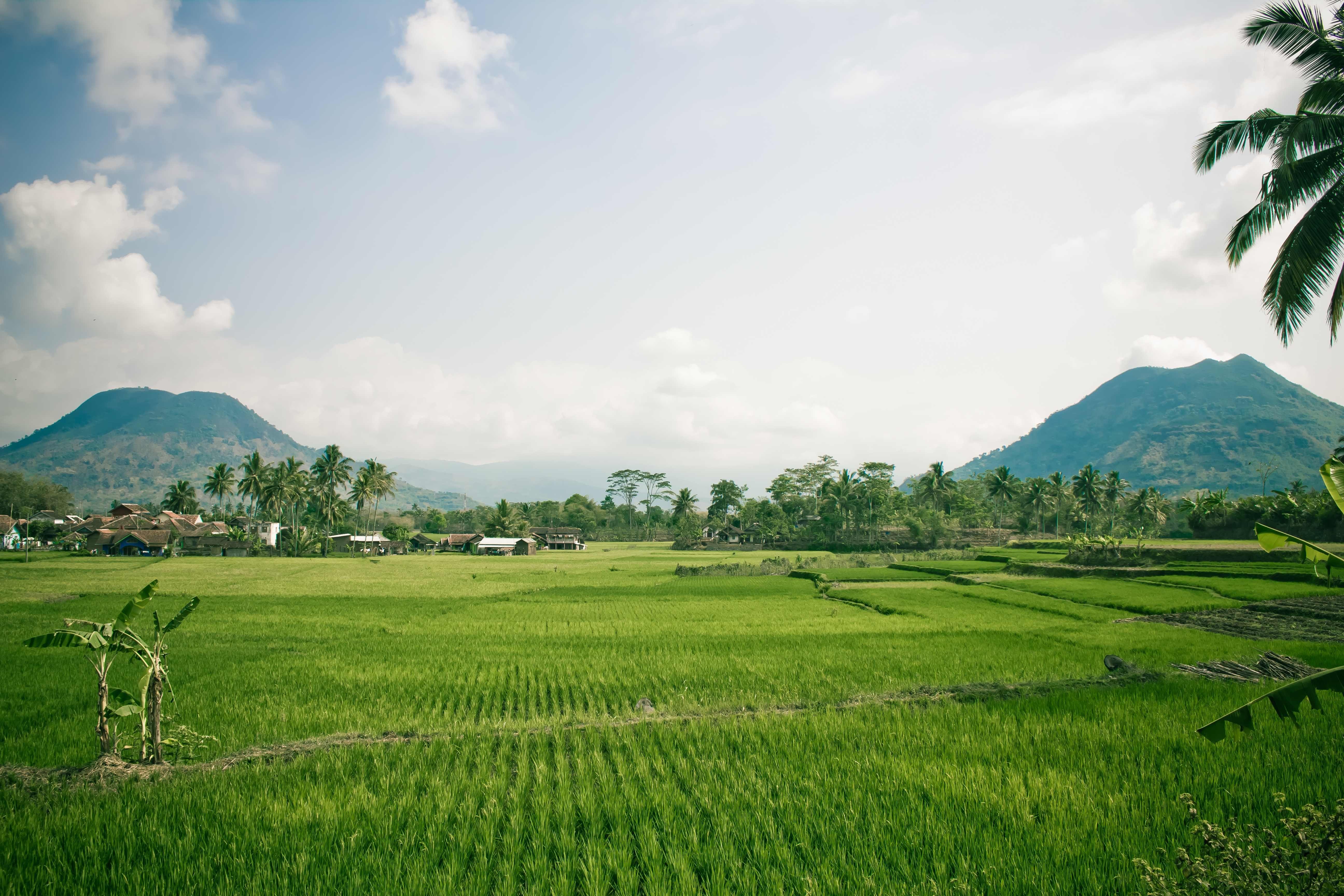 Nyasar Nyasaran Di Gagarutan Indonesia Pemandangan Tanah